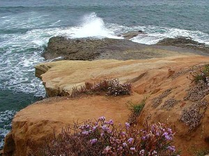 beaches, ocean, waves, sandstone