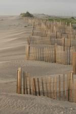 erosion, control, efforts