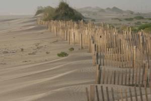 พังทลาย ควบคุม ไม้ ล้อมรั้ว ทราย