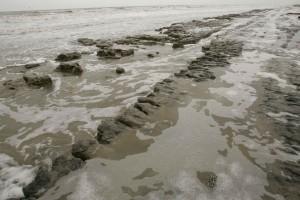 example, beach, errosion, beach, mud