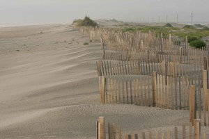 fence, beach