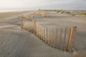 nice, wooden, fence, sea, beach