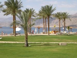 Palm, плаж