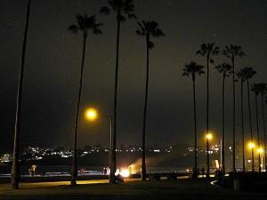 палмови дървета, плажове, нощ