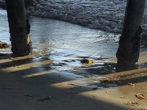 Пиърс, плажове, океан