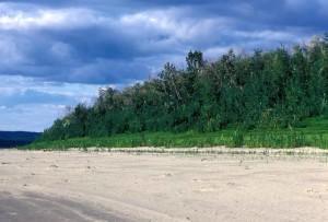river, shoreline, large, grass