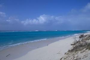 rivage, à mi-chemin, plage
