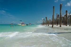 tropicale paradis, boaters înotători