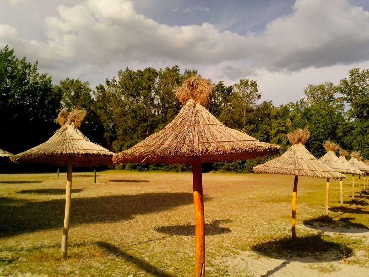 umbrellas, dry, reeds, beach