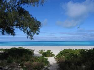 plage, sable, île