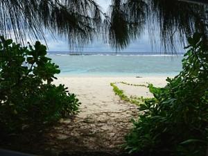 ritidian, beach, puita, Guam, kansallispuisto
