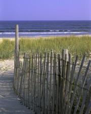 bois, barrière, plage, dune, stabilisation