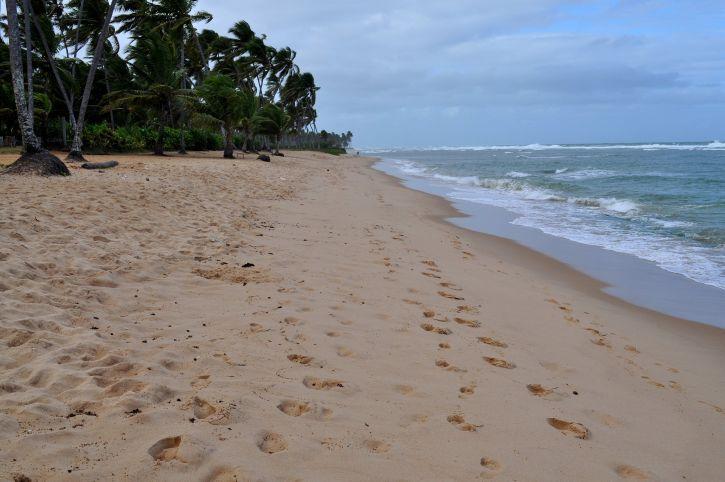 yellow, sand, beach