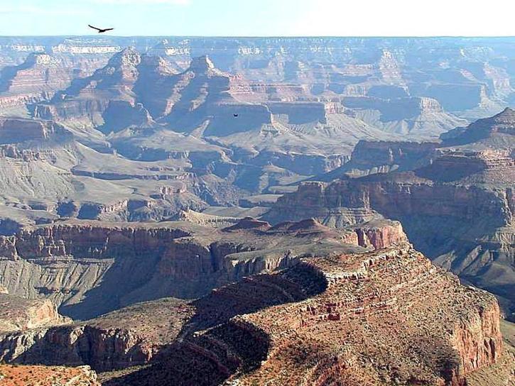 grand, canyon, landscape
