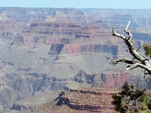 grand, canyons, falaises, nature