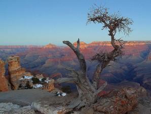 yaki, point, grand, canyon