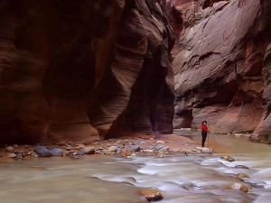 zion, hiker, sweetie, hiking, Zion, narrows