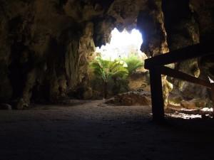 ถ้ำ ทางเข้า naracoorte ออสเตรเลีย