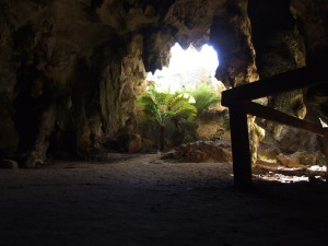 gua, masuk, naracoorte, Australia