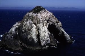 grand, brumeux, îlot, falaise