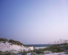 pittoresque, golfe, rivage