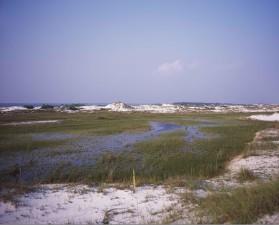 scenic, shoreside