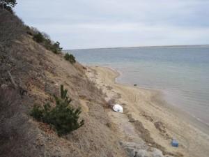 coastal, area, monomoy, wilderness, refuge, cape