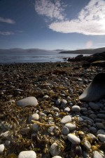 coastal, environment, landscape