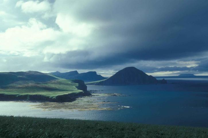dora, harbor, shoreline