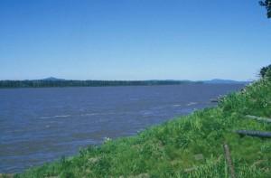 βλέμμα, ποτάμι, ακτή, σκεπαστή, πράσινο, γρασίδι