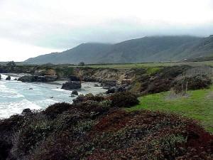 monterey, vagues, plage, côte, océan, l'eau