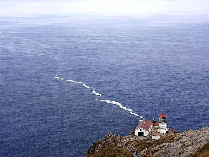 point, reyes, lighthouse, Francisco