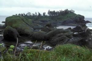 rocheux, littoral, de la mousse, des roches
