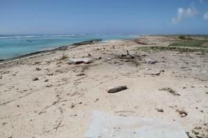 lavé, région, rivage, tsunami