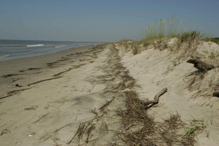 vrak, line, high, příliv a odliv, mark, duny