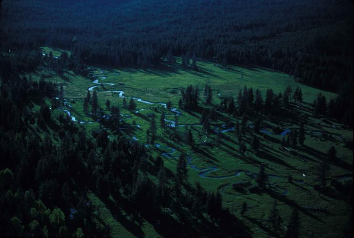 aérien, long, ruisseau, Oregon