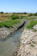 beau, paysage, ruisseau, végétation