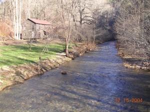 blue, shiner, habitat, stream