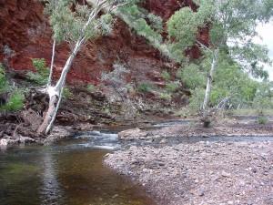 ruisseau, lit, roche, strates, Wittenoom, Gorge