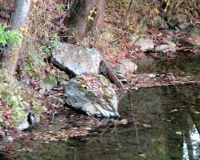 pêche, trou de pêche, le cuivre, le ruisseau