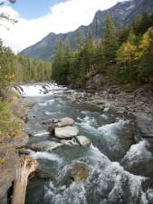 flathead, rivière, ruisseau