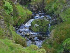 glengesh, pass, Ireland, stream, brooks, water, moss