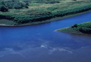 Junction, Innoko, potok, rieka, hather
