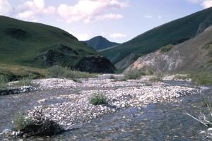 montagne, ruisseau, ressort, scénique
