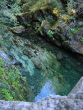 opal, creek, wilderness