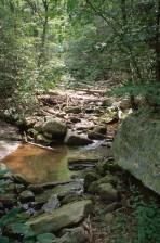 peu profond, rocheux, montagne, ruisseau