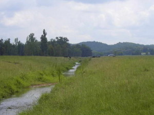straightened, stream, Georgia