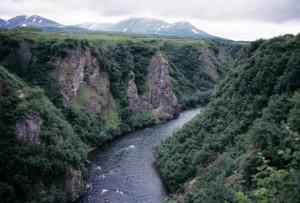 ruisseau, temps de printemps, sauvage, scenics