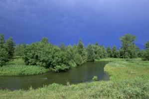 ruisseau, méandre, prairie, brosse, tempête, nuages, la distance