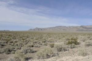scénique, désert, paysage, désert